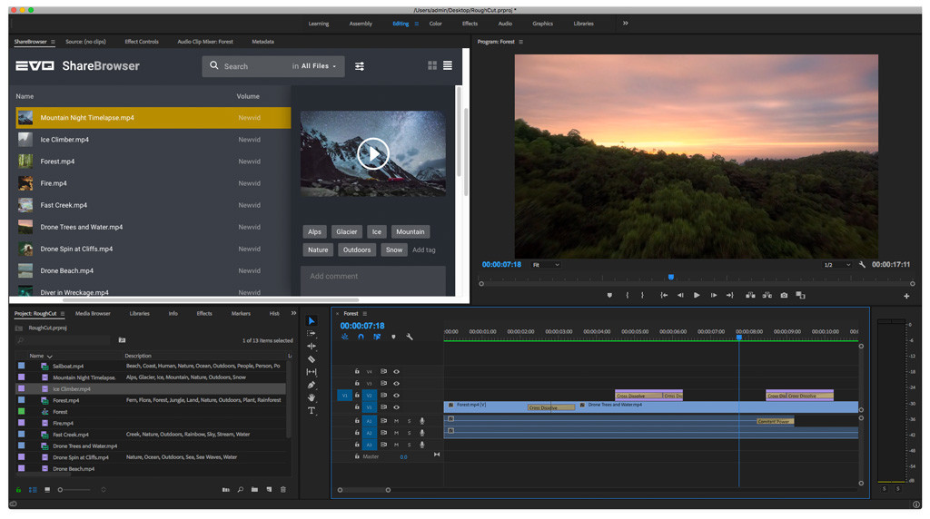 Screenshot of the ShareBrowser media asset management panel for Premiere Pro